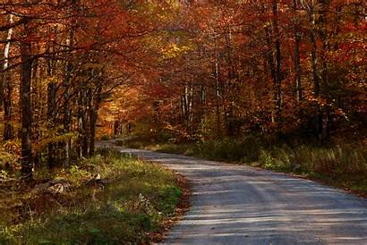 Country Roads Fall Nature Forest Scenes Take