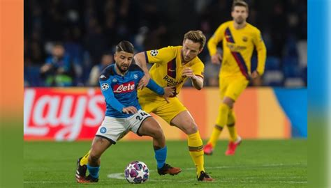 Find related and similar companies as well as key personal and contact numbers. Insigne's Official Napoli Signed Shirt, 2019/20 - CharityStars