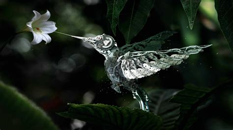 1440p Animated Wallpaper - mechanical hummingbird wqhd 1440p wallpaper pixelz