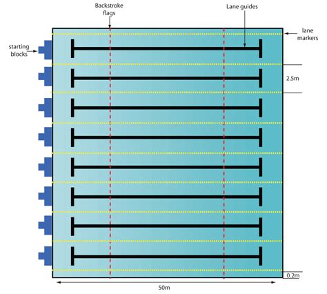 swimming pool dimensions dimensions for swimming pools be a master masters thesis research swimming facilities