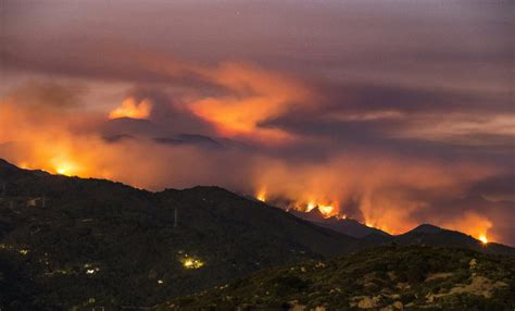 western wildfires feed  grass brought   winter rain