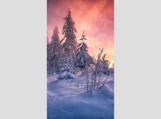 雪后的景色,锁屏图片,高清手机壁纸,风景回车桌面
