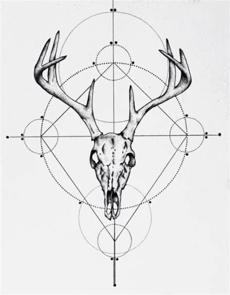 Deer Skull Drawing Art Print