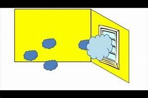 Beschlagene Fenster Innen : video fenster laufen an was tun ~ Bigdaddyawards.com Haus und Dekorationen