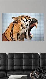 Sumatran Tiger Opening Its Mouth Wide Poster Art Print ...