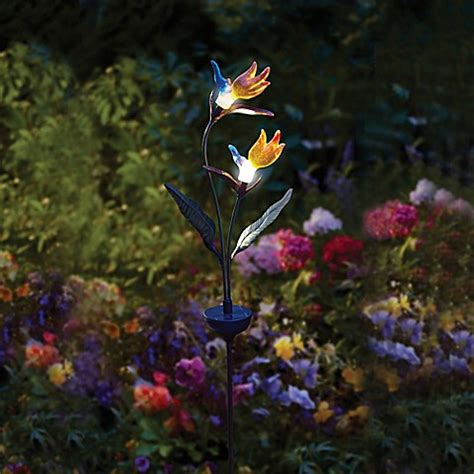 solar powered birds  paradise lighted garden stake bed