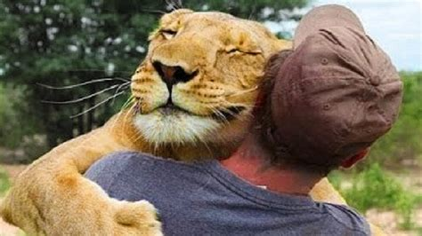Most Amazing Wild Animal Fights
