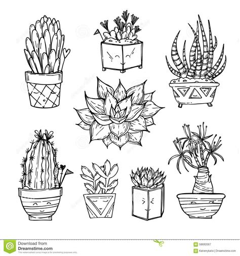 crystal drawing succulent     ayoqq