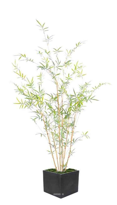 bambou artificiel cannes jaunes et feuillage vert en plastique exterieur du site artificielles