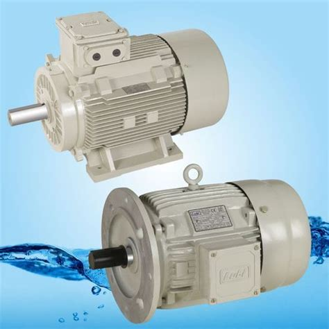 Induction Electric Motor by Induction Electric Motor Manufacturer From Ahmedabad