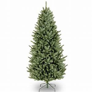National Tree Company 7 ft. Natural Fraser Slim Fir Tree ...