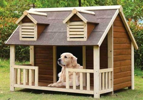 top  dog houses  large dogs   doggie woof