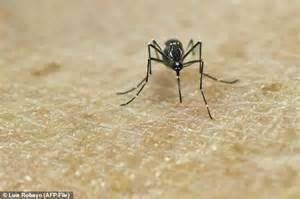Zika Virus Male Sufferers Are Told Dont Get Women