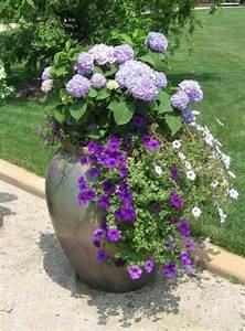 Kübel Bepflanzen Winterhart : k bel pflanzen lila farbe hauch duft sch nheit ~ Michelbontemps.com Haus und Dekorationen