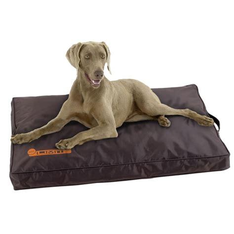 tapis pour chien indestructible matelas no limit en t 233 flon 174 tapis et matelas pour chien karlie wanimo