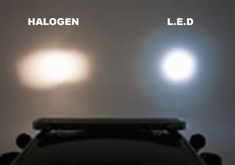 microscope light sources halogen or led