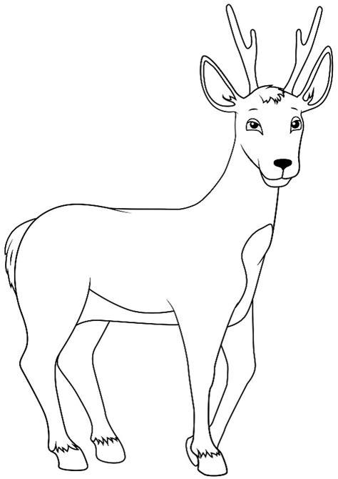 Ausmalbilder von hunden gibt es hier bei happycolorz viele, kostenlos zum ausdrucken auf einem blatt papier. Ausmalbilder Waldtiere 7 | Ausmalbilder Tiere