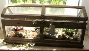 Mini Gewächshaus Selber Bauen : mini gewaechshaus mini gew chshaus aus alten cd h llen selber bauen pictures to pin on pinterest ~ Markanthonyermac.com Haus und Dekorationen
