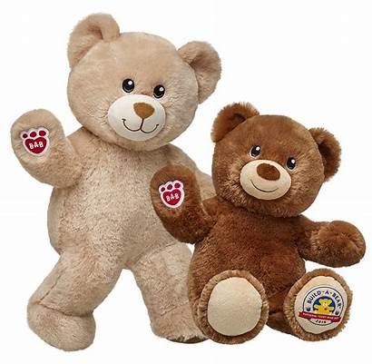 Teddy Bear Transparent Build Clipart Stuffed Toys