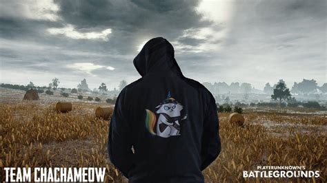 Team Chachameow Pubg Wallpaper For Phone And Hd Desktop Backgrounds