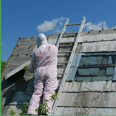 mold removal asbestos abatement contractor hudson county