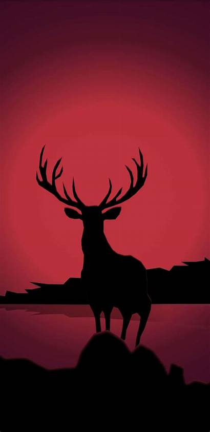 1440 2960 Wallpapers Samsung Galaxy S9 Deer