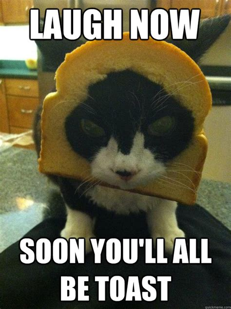 Toast Meme - laugh now soon you ll all be toast angry breaded cat quickmeme