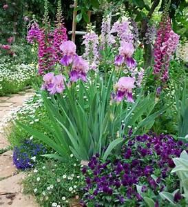 beautiful allee de jardin fleurie gallery design trends With modele de jardin moderne 0 1001 conseils et modales pour creer une parterre de fleurs