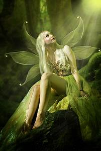 faerie warming her back and wings in sun beam | in my ...