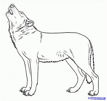 Wolf Howling Wolves Draw Coloring Moon Pages