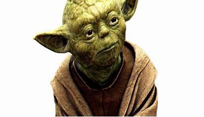 Yoda Master Head Jedi Groove Greasing