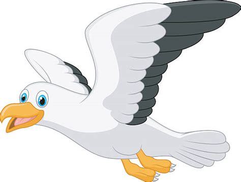 Seagull Clipart Royalty Free Seagull Clip Vector Images