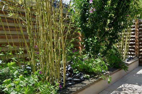 avant apres amenager  jardin tout en longueur