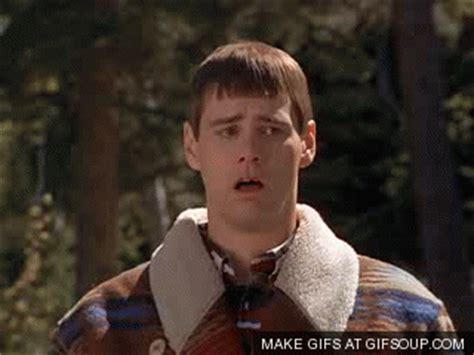 dumb and dumber gifs find share on giphy