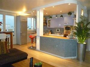 Bar Cuisine Ouverte : cuisine ouverte photo 1 17 creation du bar colonne ~ Melissatoandfro.com Idées de Décoration