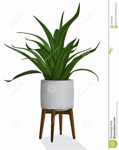 Modern Spiky Concrete Houseplant Container Plant Stand