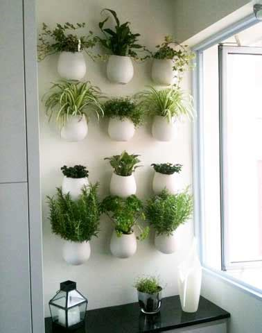 plantes aromatiques cuisine decoration cuisine plantes aromatiques