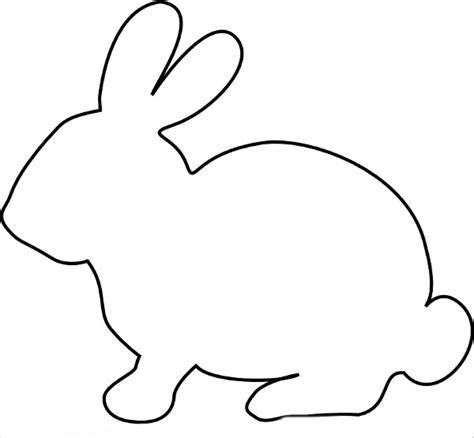 bunny templates    premium templates