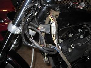 Harley Softail Wiring Harness Harley Flasher Switch Wiring Diagram