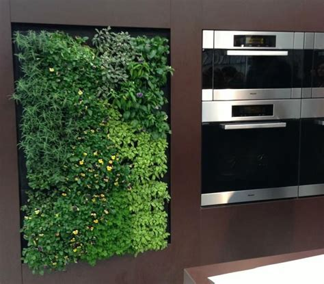 Vertical Herb Garden In Your Kitchen by 103 Best Vertical Gardens Green Walls Green Roofs