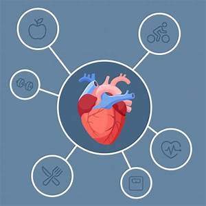 What Is Heart Disease  Heart Health Problems Explained