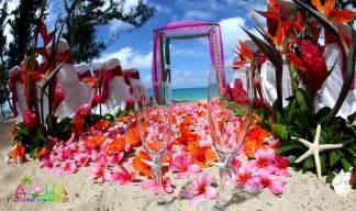 hawaiian wedding crazydevil lovelyyyy