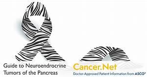 Neuroendocrine Tumor Of The Pancreas