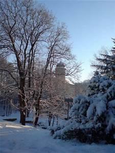 Gartenfest Im Winter : natur im winter ~ Articles-book.com Haus und Dekorationen
