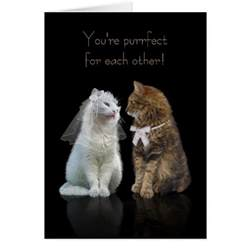 congratulations promotion card wedding engagement congratulation for cat card