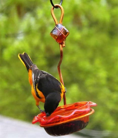 birds choice single cup oriole tray bird feeder wayfair
