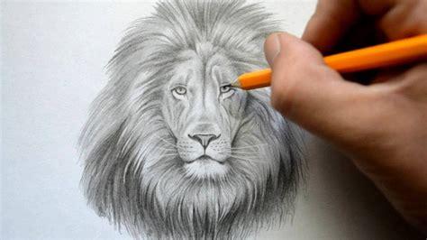 time lapse drawing   lion art tutorial