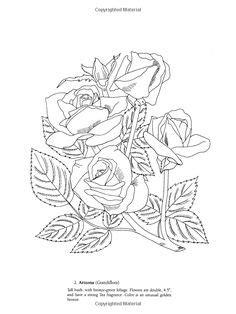 simple rose bush drawing - Google Search | Inspiring Ideas