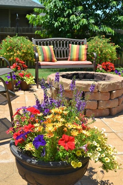 potted trees for patio 6 patio pots designs dig this design 4373