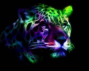 Neon Leopard 3D and CG & Abstract Background Wallpapers
